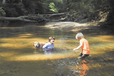 Alec Williams, 6, left, with his brother Cullen, 4, and their dog Cooper, cool off in Nancy Creek at the Blue Heron Nature Preserve in Buckhead on July 18.