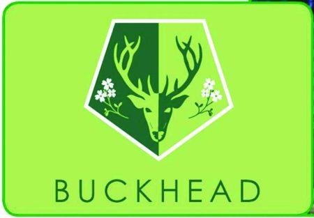 The Buckhead neighborhood flag created by the Buckhead Coalition.