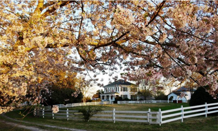 Brookfield Plantation in Griffin, Ga., is one of the farm properties brokered by Sister Hood.
