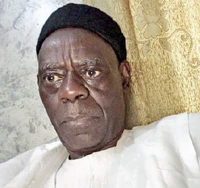 Presidency: Nothing wrong if North retains power in 2023 – Anthony Sani, ex-ACF scribe