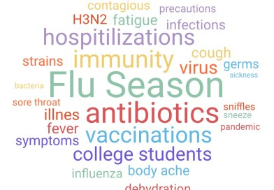 Influenza Frenzy: A Surveillance Report on This Year's Virus