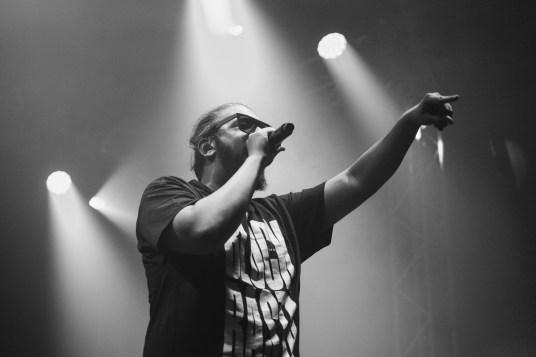 Samy Deluxe auf dem Chiemsee Rocks 2015 (Photo by Milena Zivkovic)