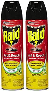 best roach killers on the market