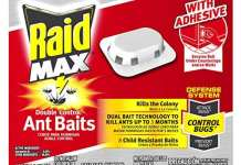 best cockroach killers