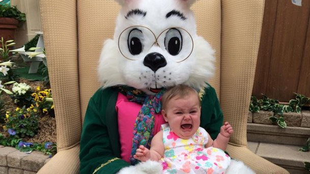 1D274905654339-today-scared-easter-bunny-140418-tease