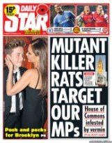 Daily_Star_7_11_2013