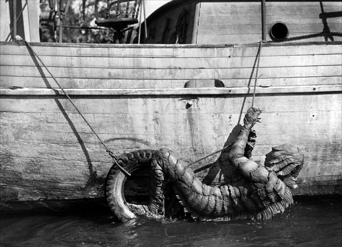 photo-l-etrange-creature-du-lac-noir-creature-from-the-black-lagoon-1954-18