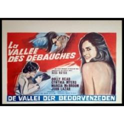 BVD-belgian