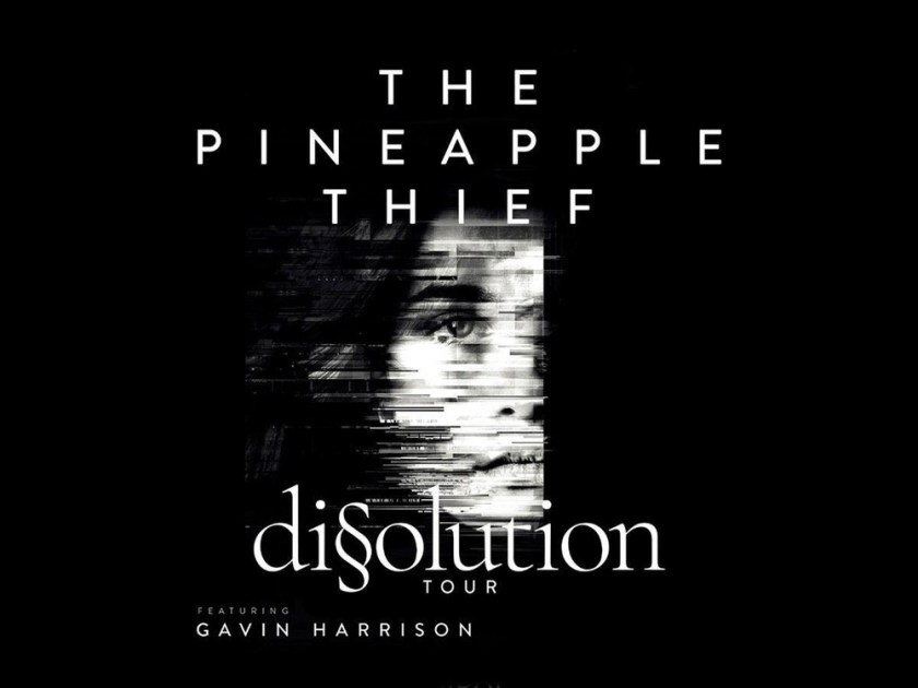 pineapple-thief-2