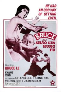 bruce-and-shao-lin-kung-fu
