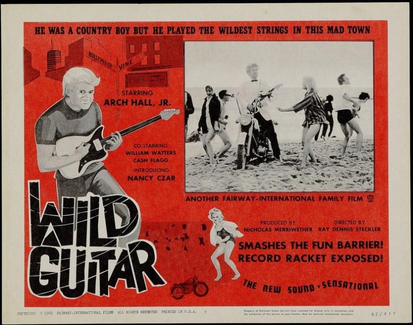wild-guitar