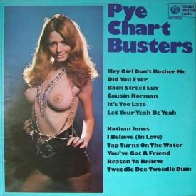 pye-chart-busters