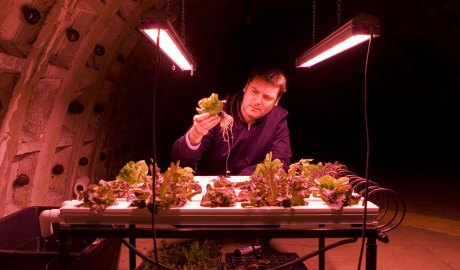 Growing Underground has transformed a series of abandoned subway tunnels into growing chambers for greens and salad leaves.
