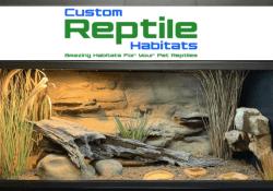 custom reptile habitats alice springs 4' reptile decor kit - featured image