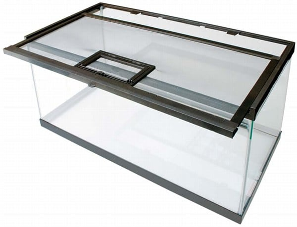 glass aquarium reptile tank
