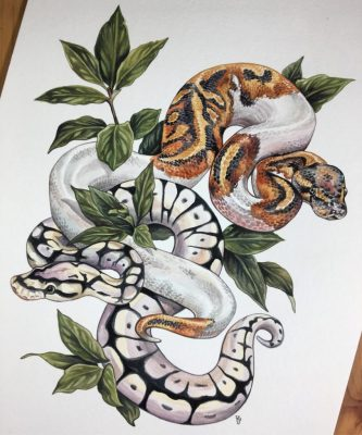 ball pythons and bay leaves - 25