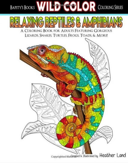 gifts for reptile lovers 2019 - snake coloring book
