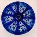 urchin tile 4