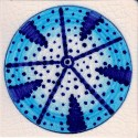 urchin tile 8