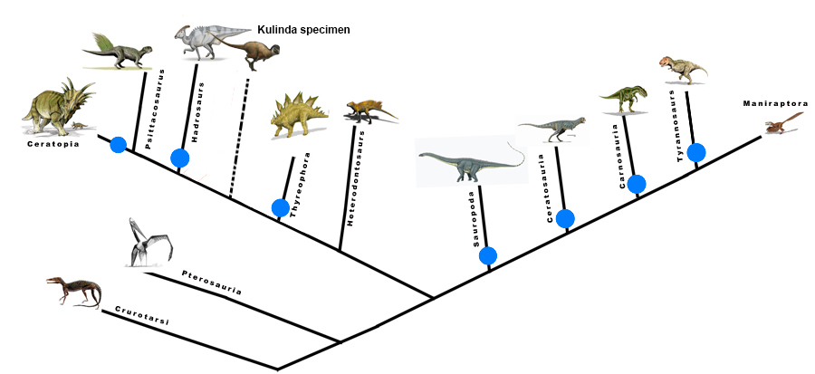 New Siberian ornithischian and the (over) feathering of