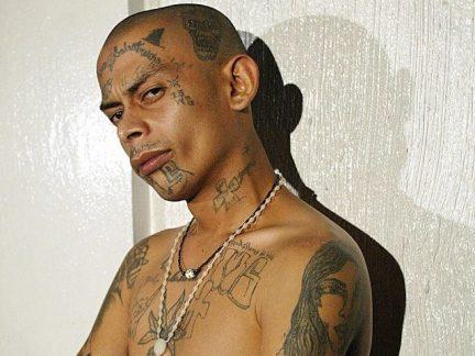 MS13 member tattoed