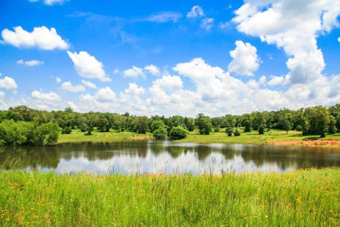 Chertoma Ranch - Lee County Texas Ranch for Sale - Republic Ranches