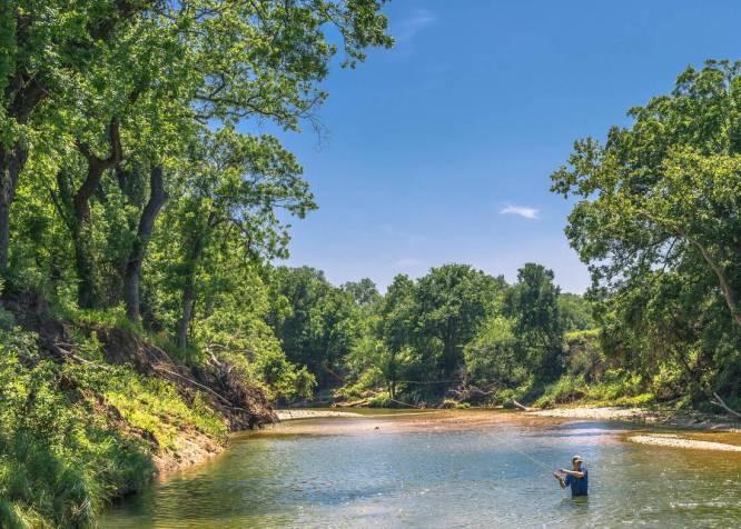 Tallon Martin Broker Ranch Real Estate Republic Ranches Texas Coryell County Cowhouse Creek -4935