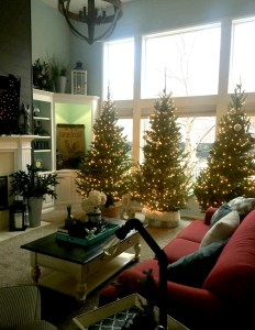 christmas-decorating-2016-1