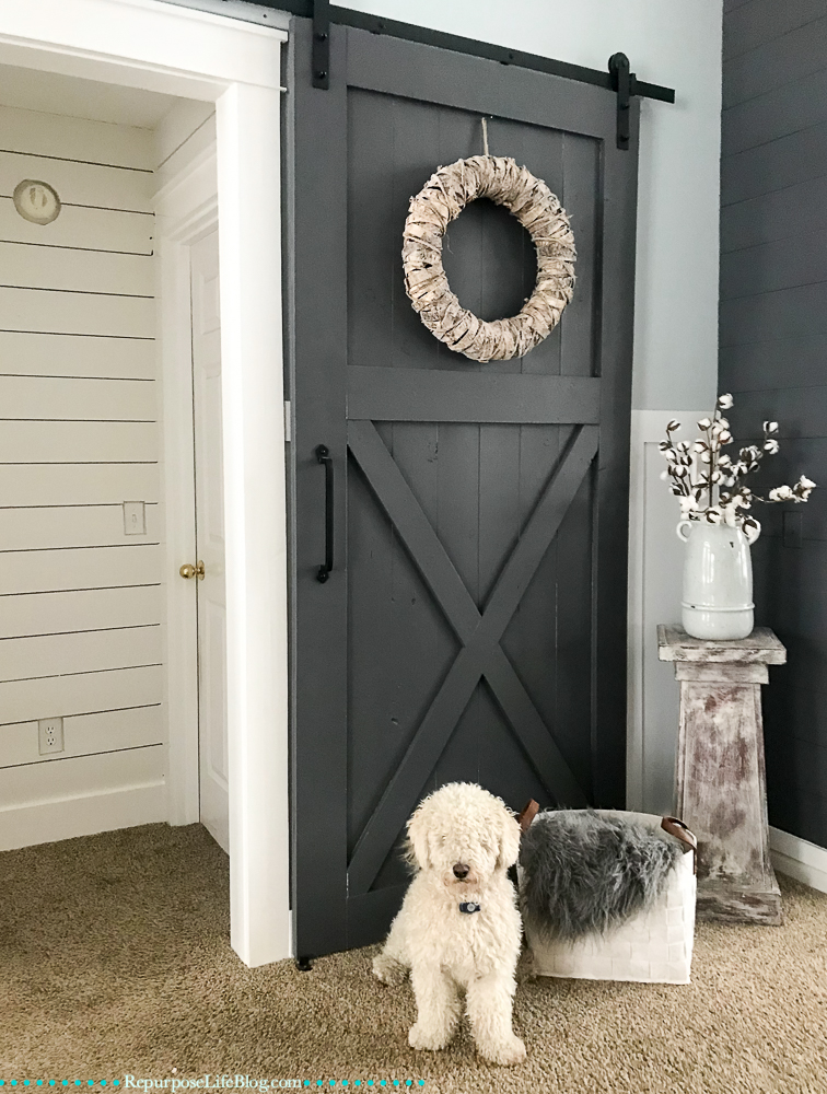 alcove with sliding barn door and white mini goldendoodle pup