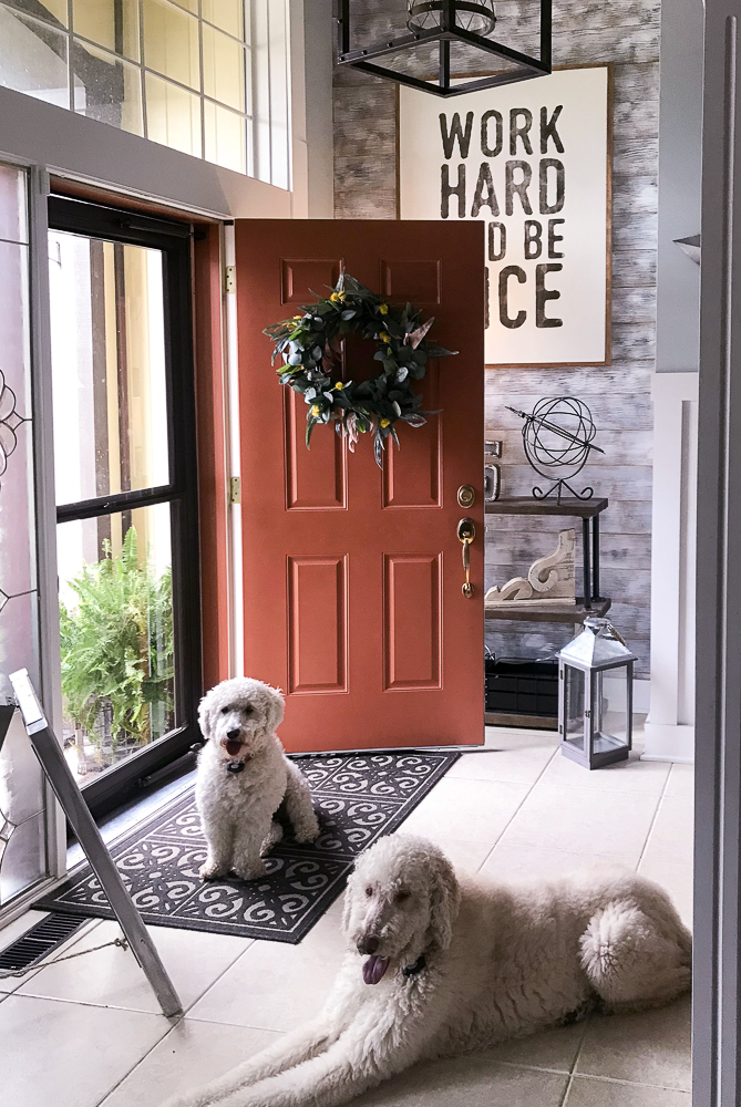 two goldendoodles in foyer