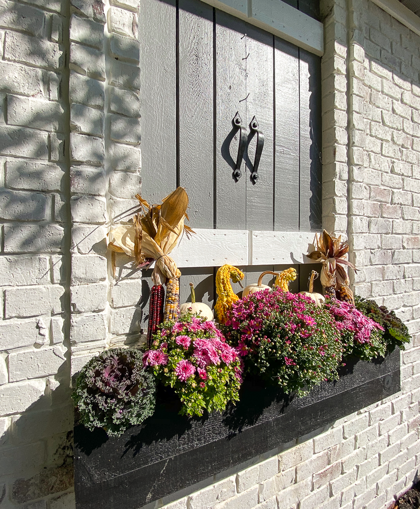 flower box with mums and fall decor
