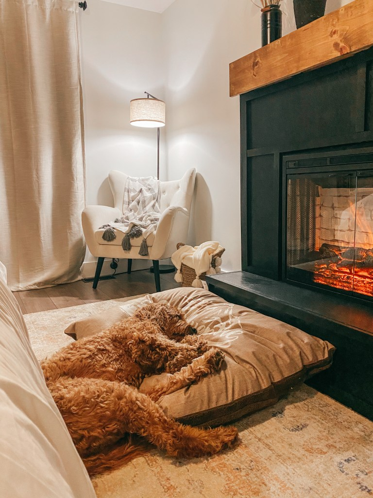 Goldendoodle in front of electric fireplace surround in master bedroom