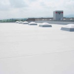 Example of Single Ply Roof