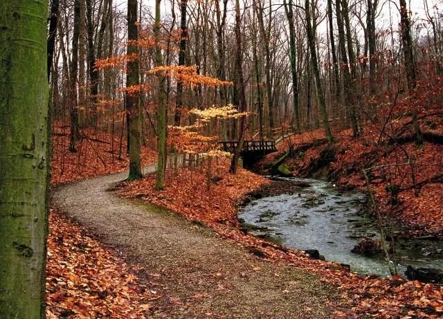 Fall Wallpaper Screensavers The Top 5 Fall Hikes In Greater Columbus