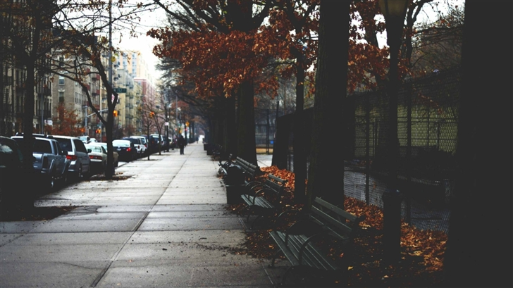 Fall Season Desktop Wallpaper Cold Autumn Day In New York Mac Wallpaper Download
