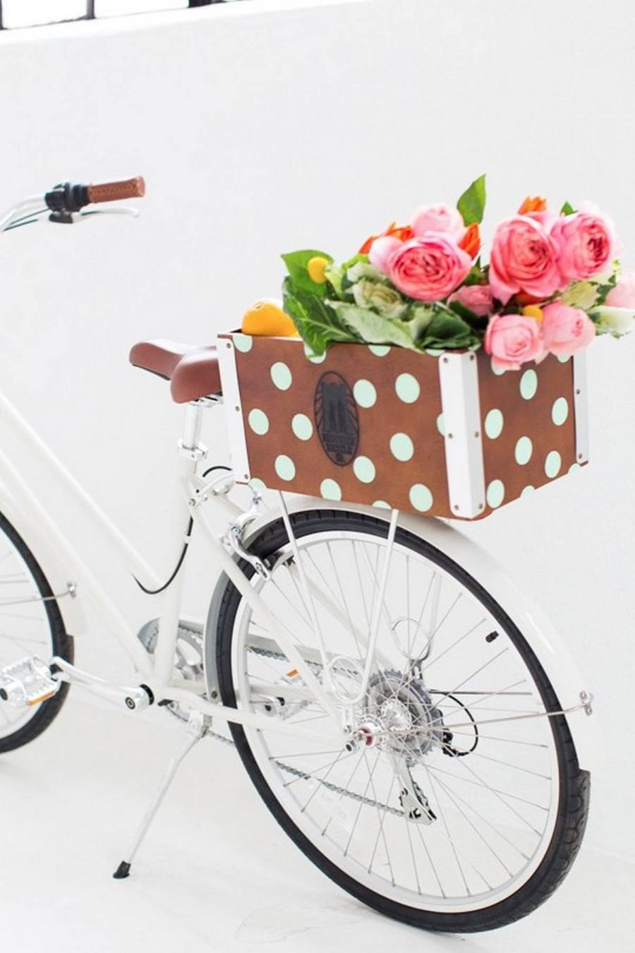 If you like riding a usual (not extreme) bike and going on picnics on it, if you like carrying your pet with you, if you often ride around the town or to the market to buy something, you'll need a bike basket or a crate, it depends on the style and look that you like.