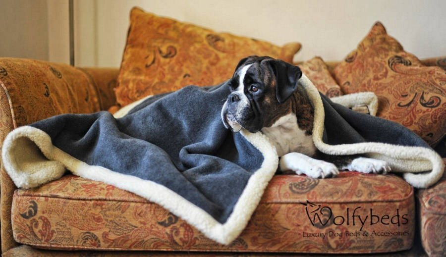 'Tis the season to get snuggly, which means you need the right blanket to wrap yourself in (because, as we all know, there's nothing better than a thick, warm throw to curl up with on a cold day).