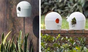 Design no jardim