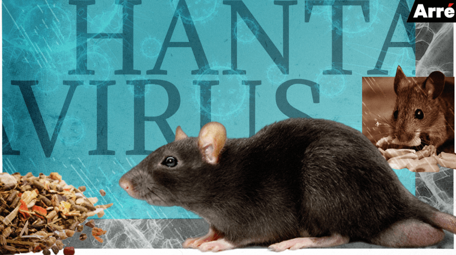 China Reports First Hantavirus Death. Should You be Worried?