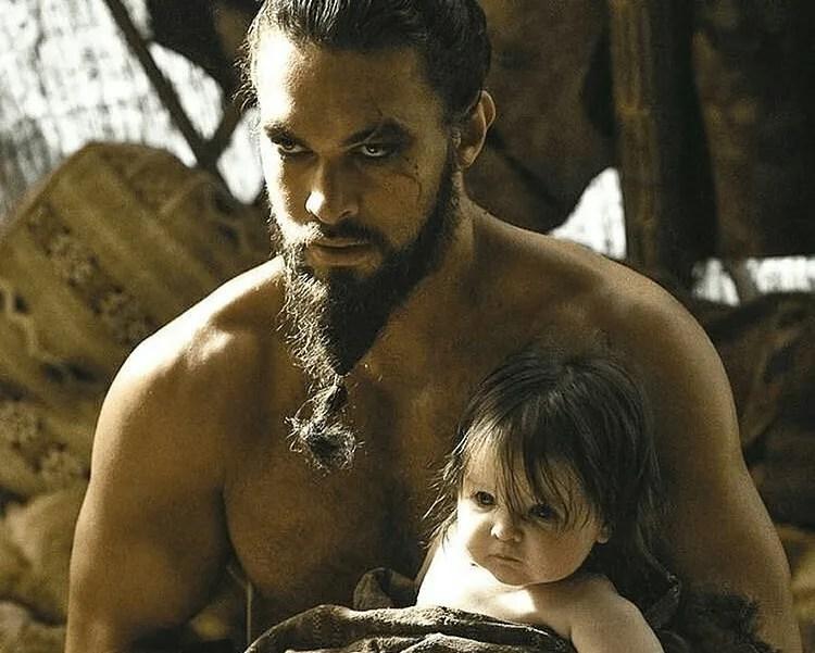 The Ponytail Viking Beard