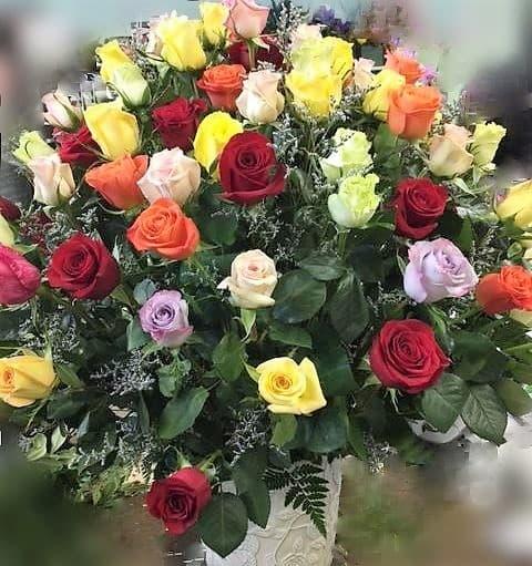 roses roses in menominee