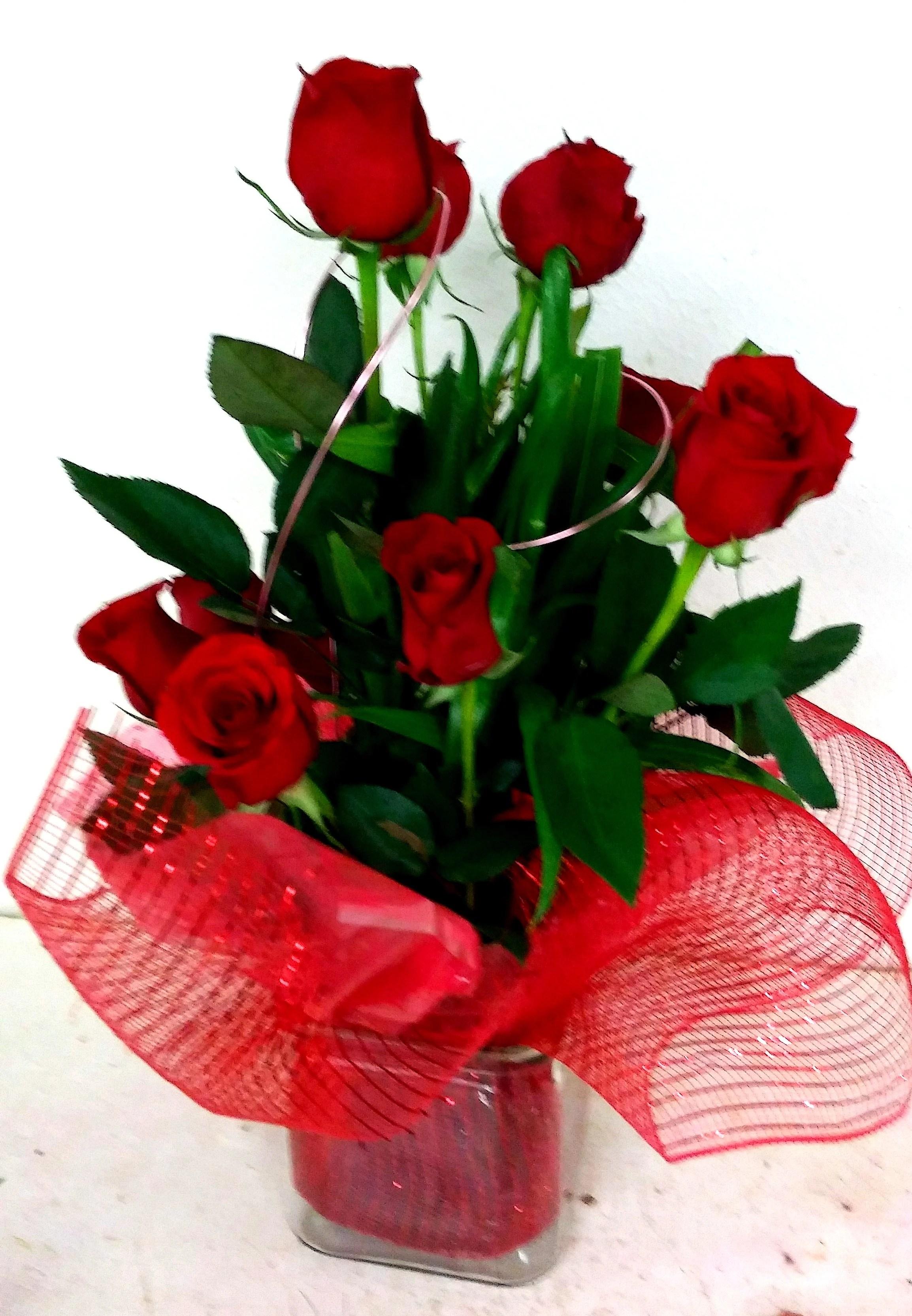 red roses modern romance
