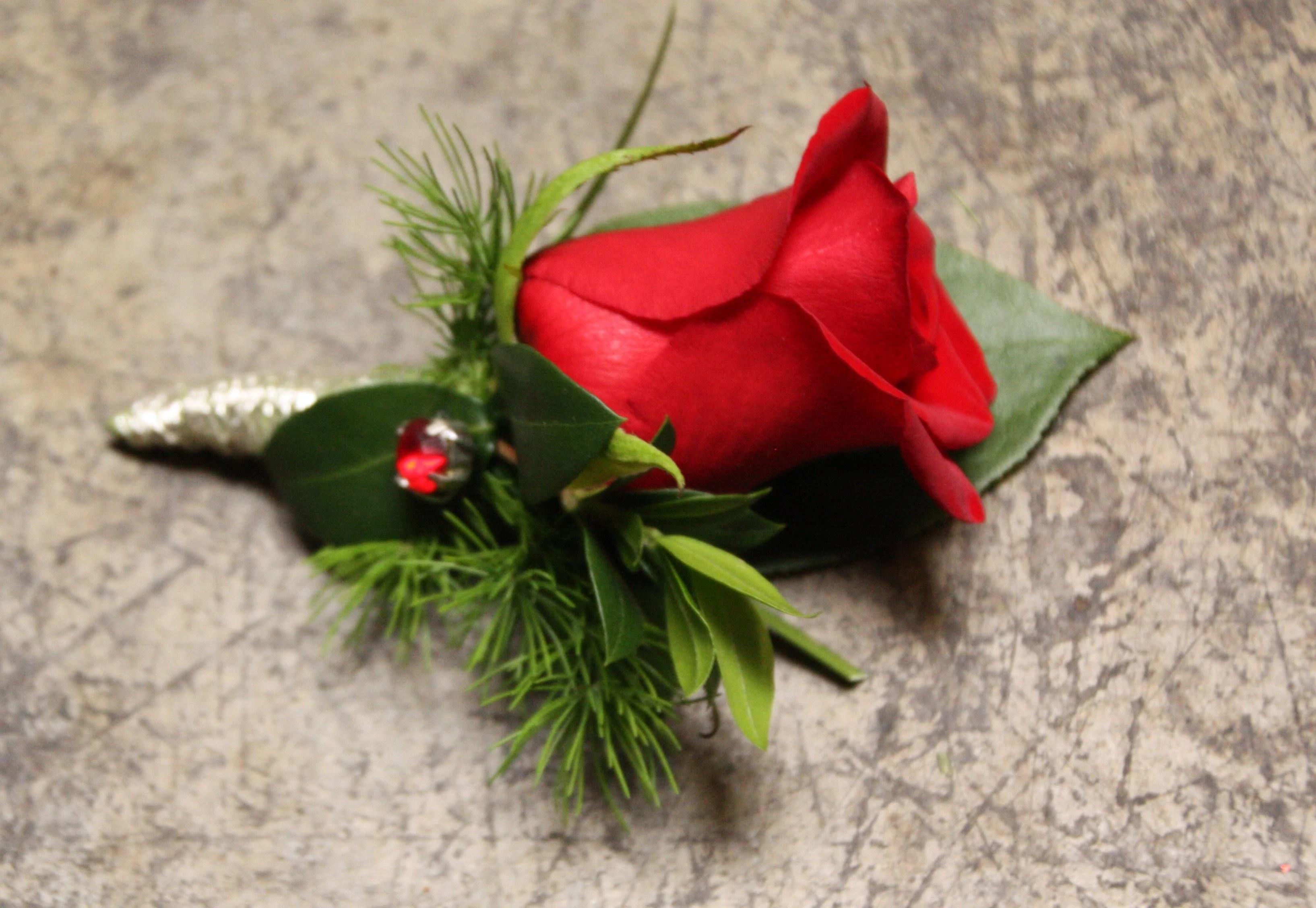 romantic red rose in