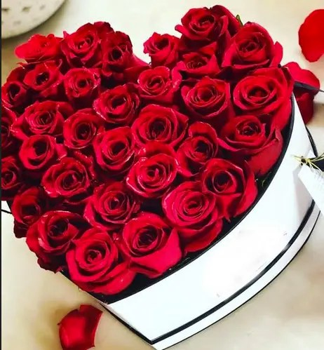 red heart of roses
