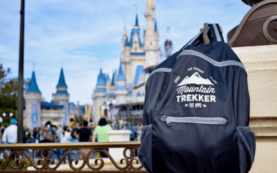 What's The Best Backpack For Disney World in 2018?