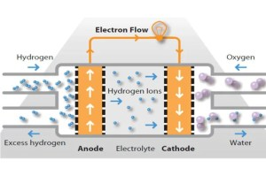 Hydrogen Fuel Cell Cars  Pros, Cons, History & How they