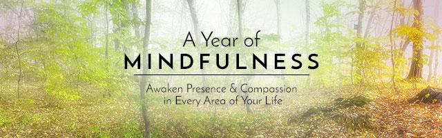 """A Year of Mindfulness': A Powerful New Video from Jon Kabat-Zinn, Tara Brach, & Jack Kornfield at SoundsTrue 7 ""A Year of Mindfulness': A Powerful New Video from Jon Kabat-Zinn, Tara Brach, & Jack Kornfield at SoundsTrue"