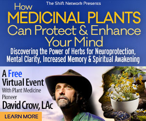 MedicalPlantsADV intro rectngle - How Medicinal Plants Can Protect & Enhance Your Mind withDavid Crow: FREE from the ShiftNetwork