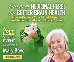 Discovering Medicinal Herbs for Better Brain Health: FREE with Dr Mary  Bove from The ShiftNetwork 4 Discovering Medicinal Herbs for Better Brain Health: FREE with Dr Mary  Bove from The ShiftNetwork