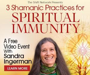 Shamans Spiritual Immunity
